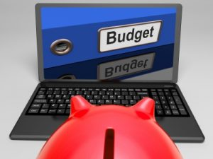 Budget to save your business